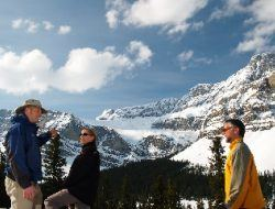 lake louise & icefields tour